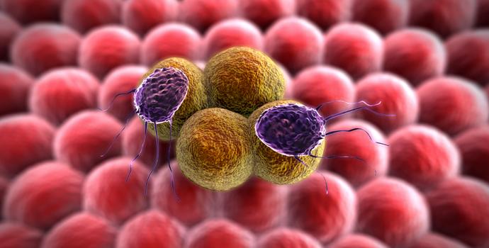 Pourquoi nos cellules s'orientent-elles vers le cancer?