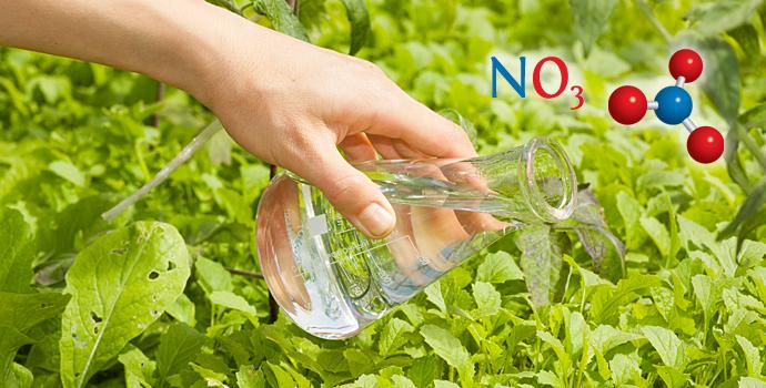 Faut-il craindre les nitrates (et les nitrites)?