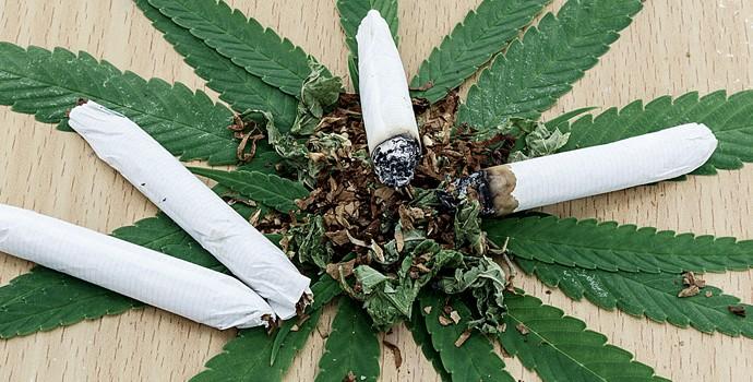 Bob Marley et la folle histoire du cannabis