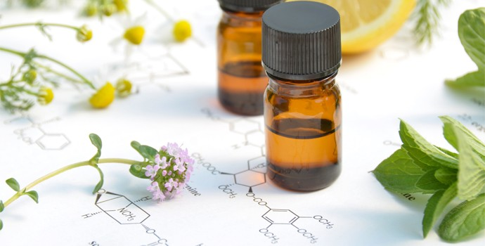 La phyto-aromathérapie pour les animaux de compagnie