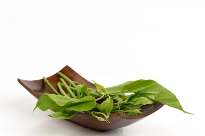Insolite : la plante qui anesthésie le goût sucré