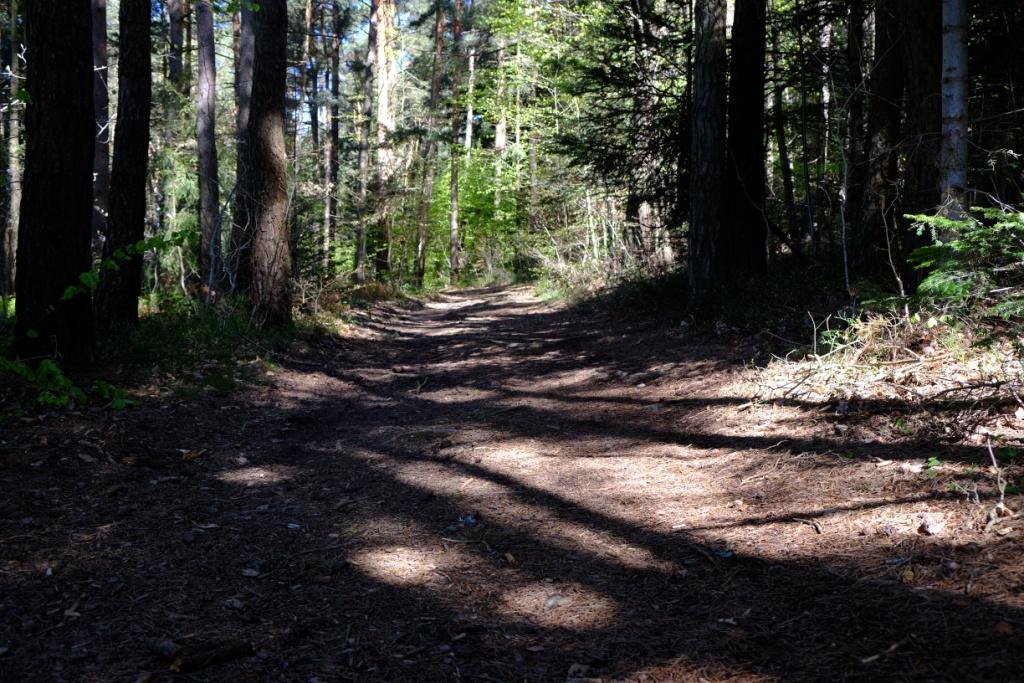 Montfaucon – Plateau Est