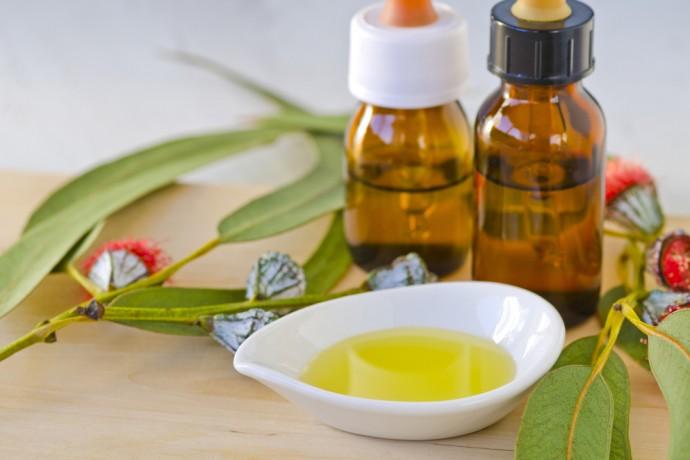 Extraordinaire huile d'Eucalyptus