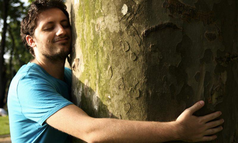 C'est prouvé : faire un câlin à un arbre renforce le système immunitaire