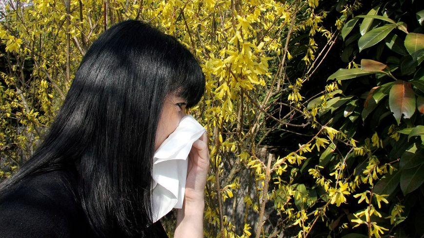 CARTE – Allergies : les pollens sont de retour