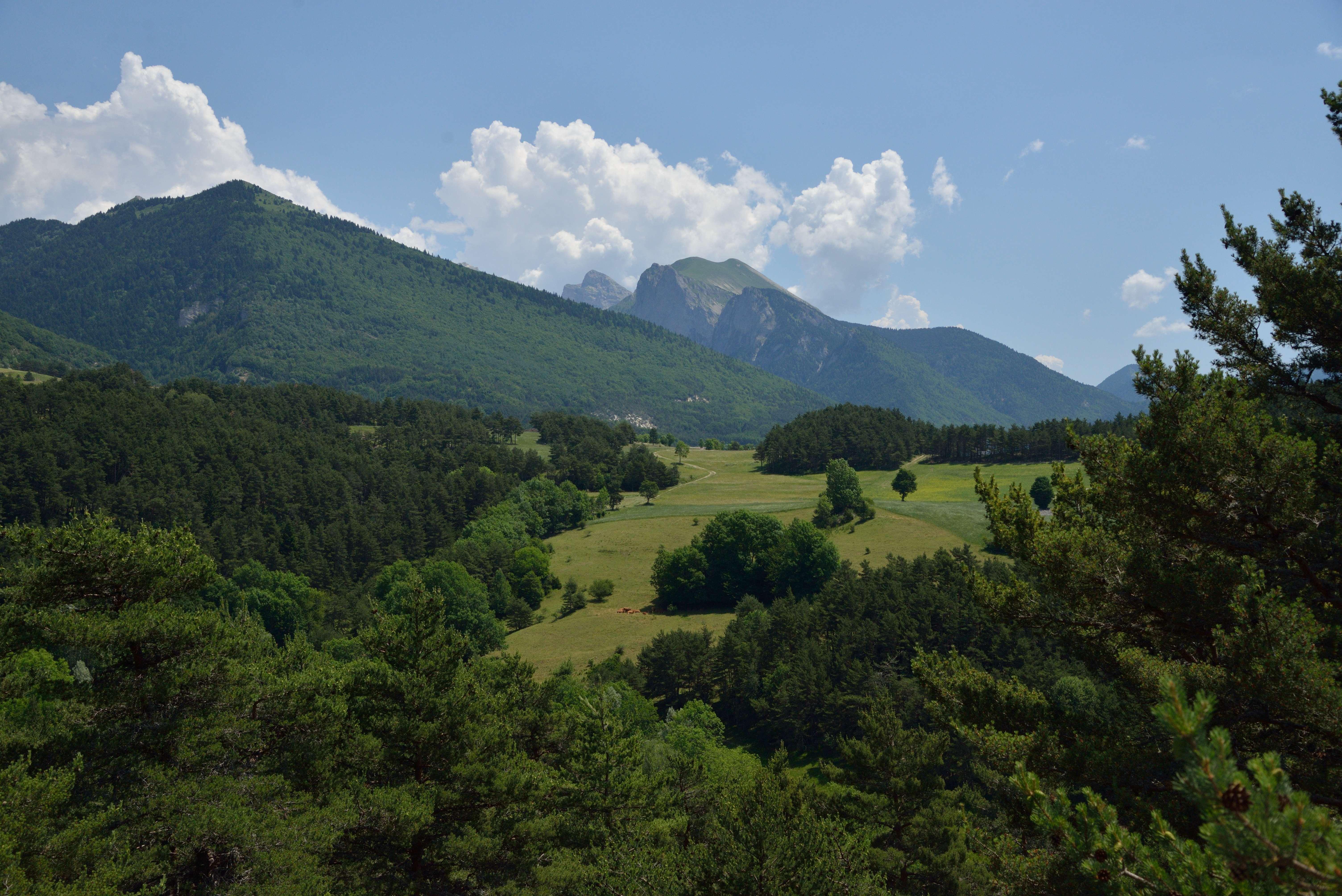 Grisail, panorama sur Lus-la-Croix-Haute